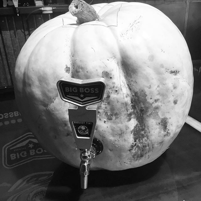 Families and friends we have pumpkins & more #pumpkinbeer for you this evening at the brewery!  Wear your costume, you'll be glad you did!  This pumpkin pictured here will pour a delicious double spiced Harvest Time infusion.  On tap we will have the official debut of bourbon barrel aged Harvest Time!  Very limited supply, you will not want to miss that.  If you're bringing a pumpkin for our pumpkin carving contest please have it here by 6pm.  We have great prizes ready for you from IMAX, @btlrev @brewgalooraleigh @marblesraleigh #rainwatersolutions see previous post for delivery details. Food trucks? Yes. Food trucks! We will have 2 bars open running 23 taps!  Recent beers you might of missed and #strangecargo brews like #saintsandsinners return for one night!